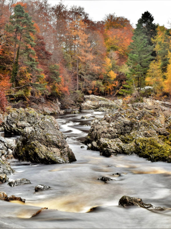 The Findhorn from the river path at Logie: by Joss Ward Photocomp winner 2017