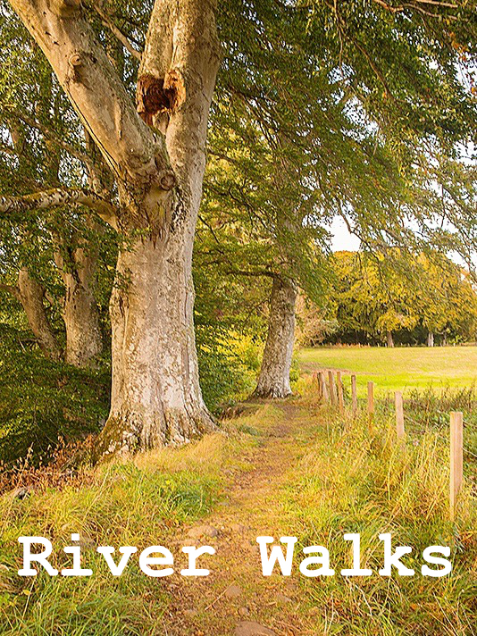 river walks along the Findhorn from Logie Steading