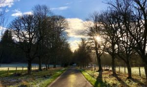 Logie Steading Drive in January