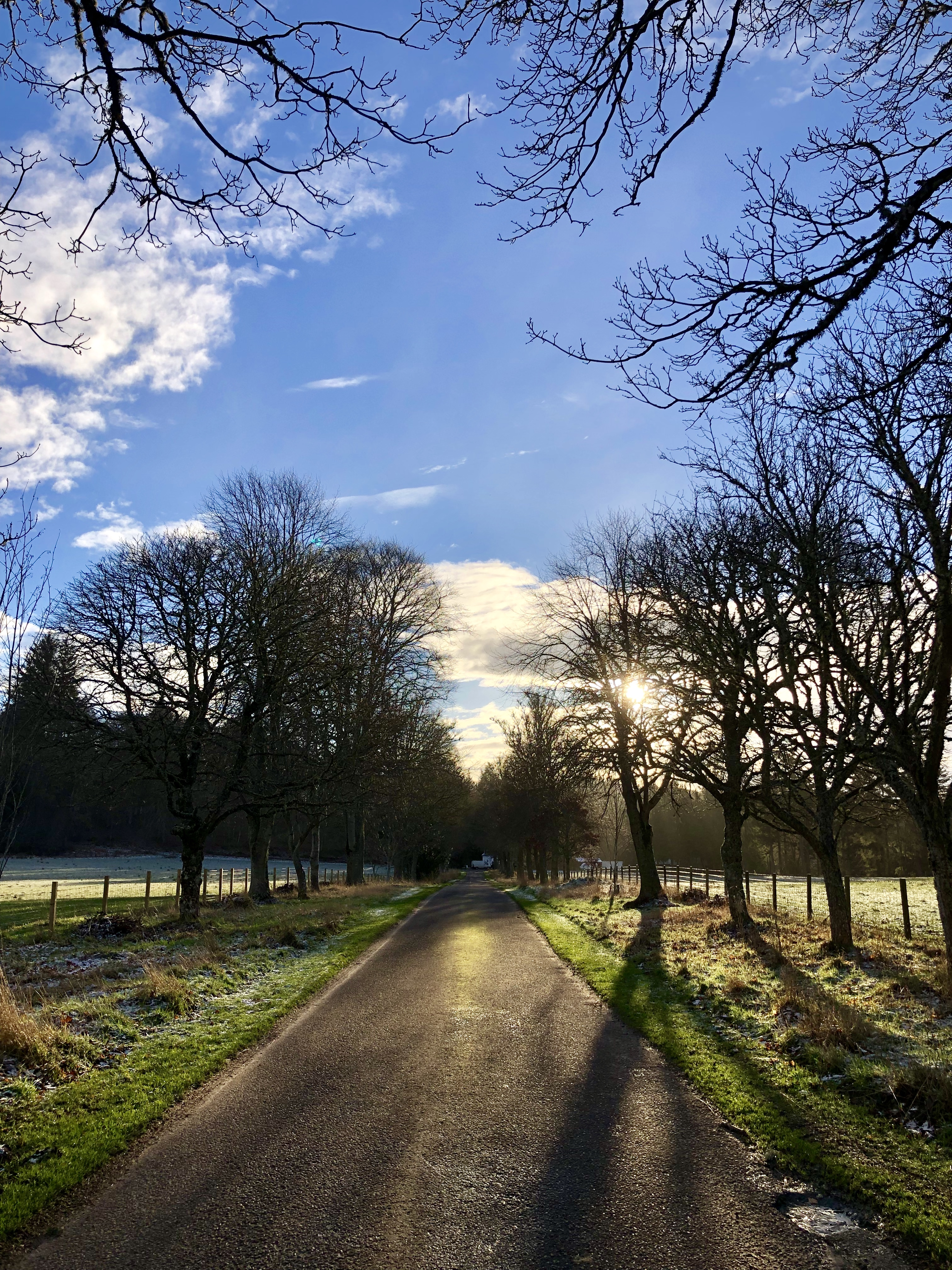 the drive to Logie Steading in January