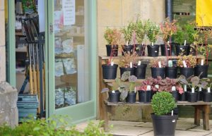 Farm Shop Products and Provenance