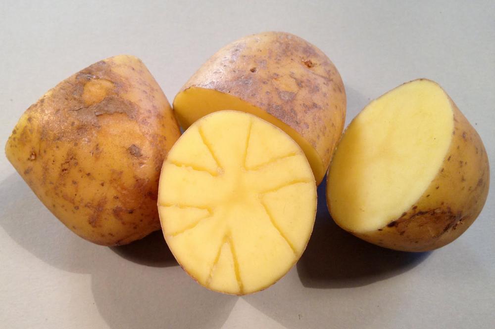 potato printing mark your design