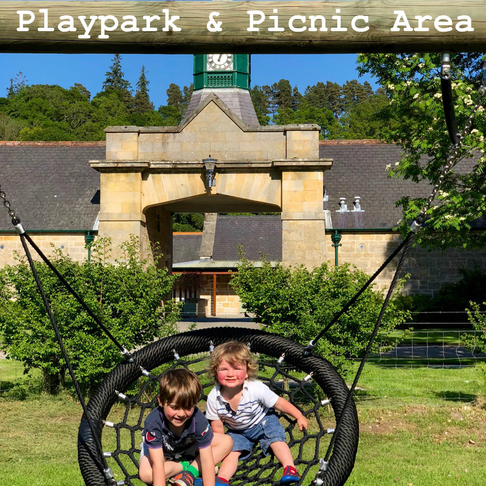 playpark and picnic area