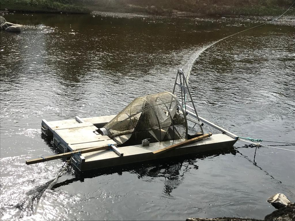 smolt trap in the River Findhorn