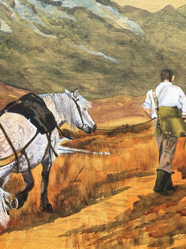 A Horse and his Boy by Jackie Hichens