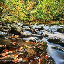 3 Oct: Photography Walk with Gary Murison