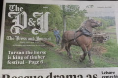 Logie Timber Festival in the Press and Journal