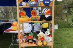 Superducks on display before the Extreme Duck Race, which raised over £3000 for the Fisheries Trust