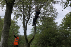 Young and old alike had a go at Tree Climbing with Logie Timber