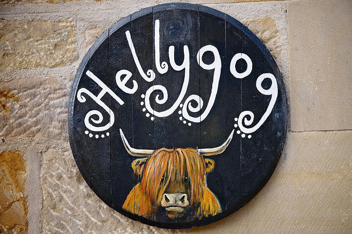Hellygog sign