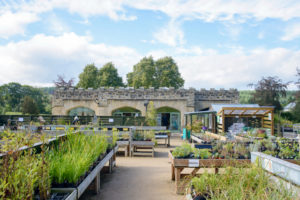 Farm & Garden Shop in the former Carriage House for Storytelling Week