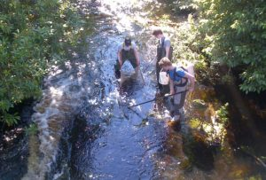 Surveying juvenile fish on the Mosset Burn