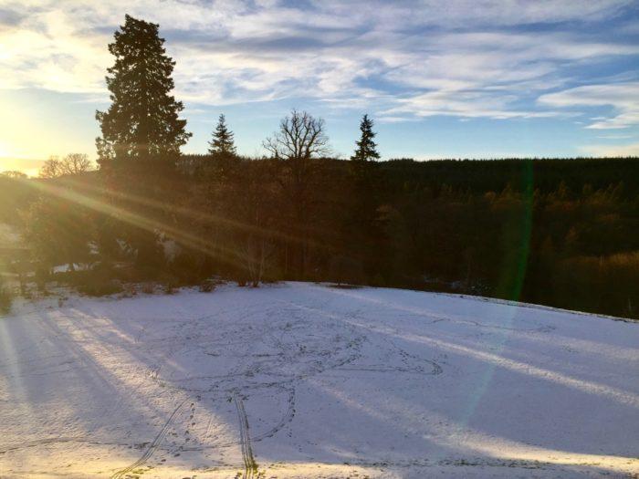 sledging tracks in Logie House Garden