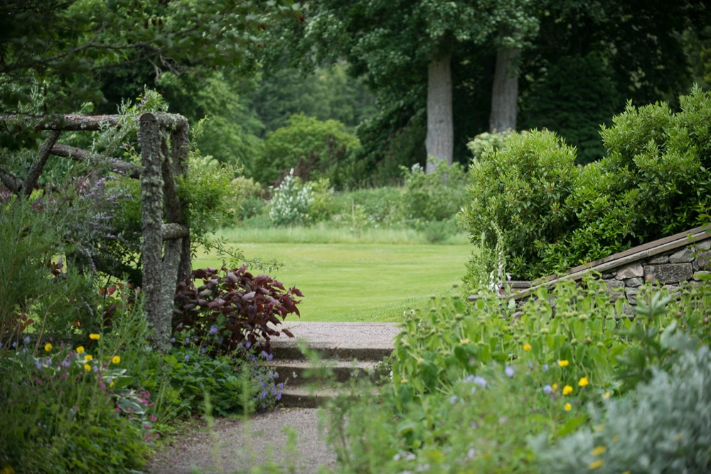 a corner of Logie House Garden in summer
