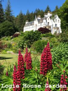 Logie House Garden