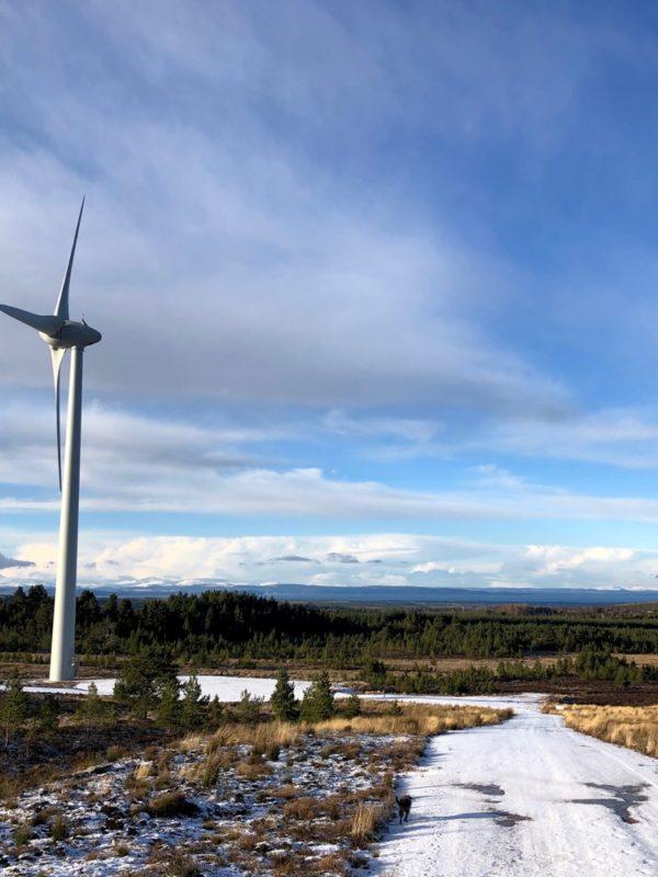 Logie Windfarm