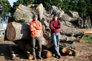 Mark and Alec Logie Timber Contact Us
