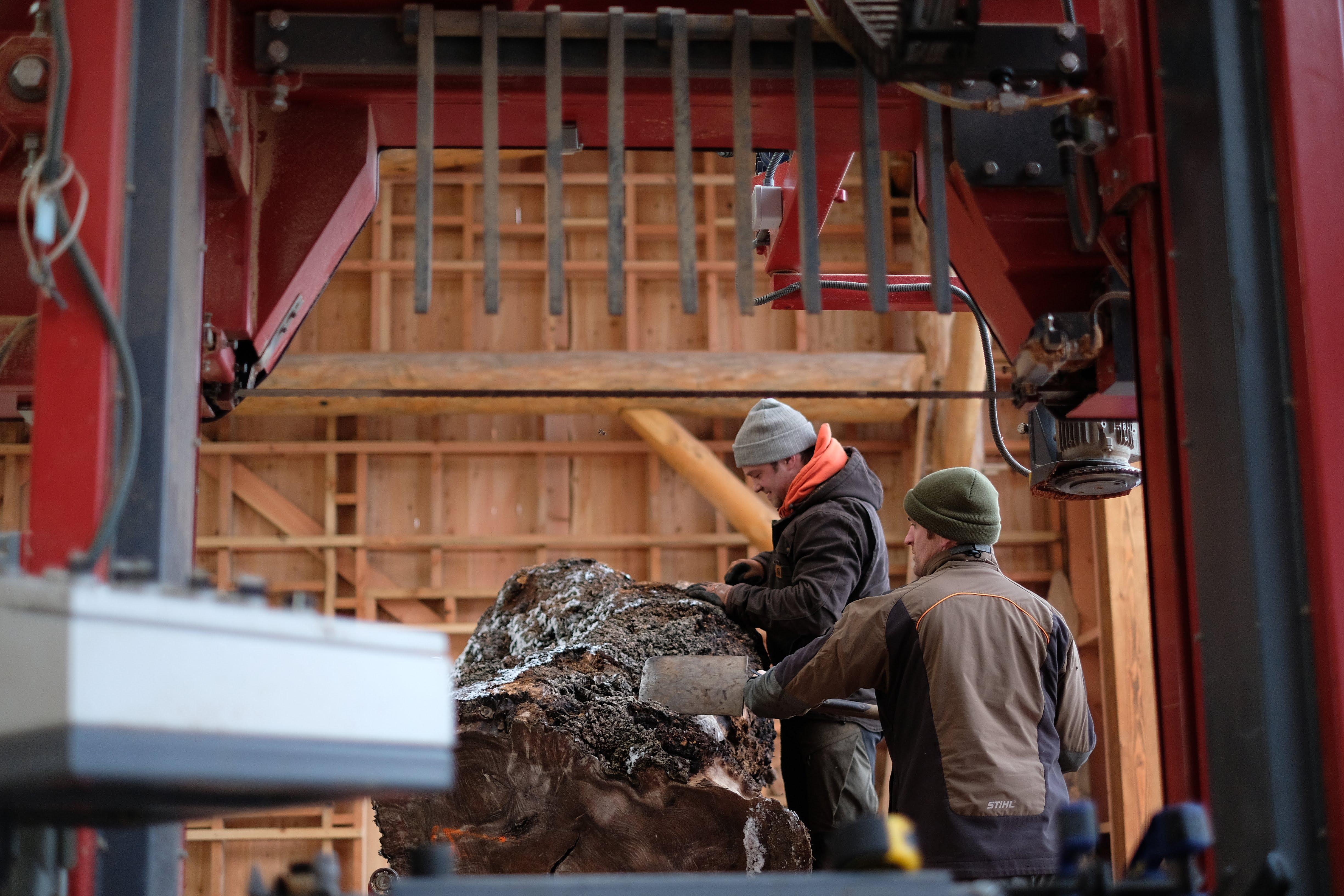 Logie TImber sawmill