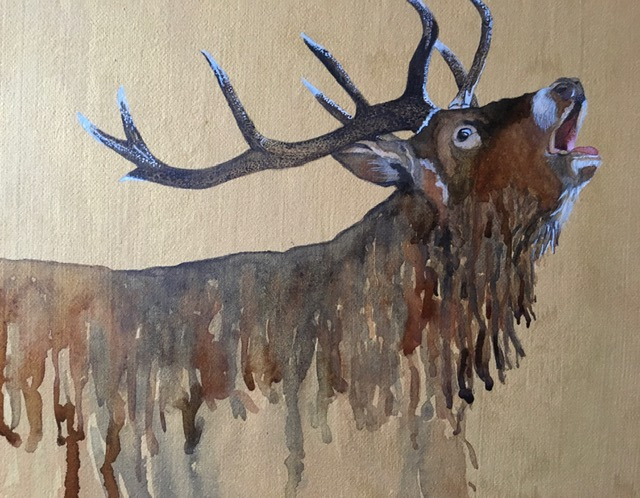 stag by jackie hichens