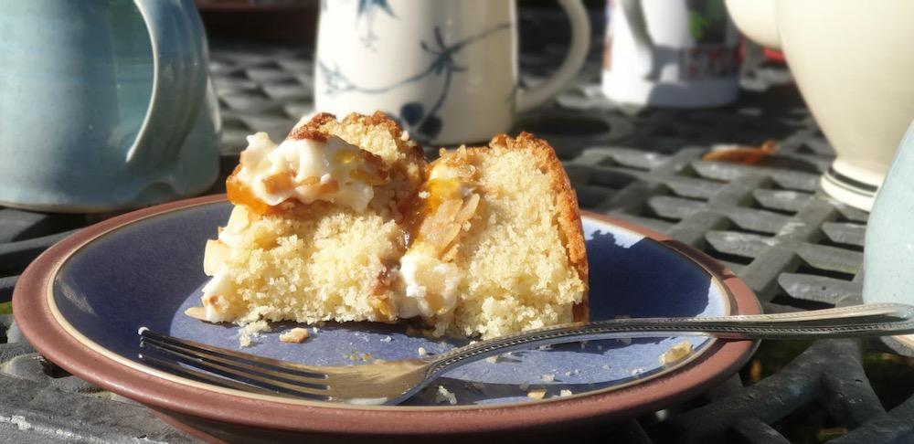 Gills plum apricot almond cake Lucys version
