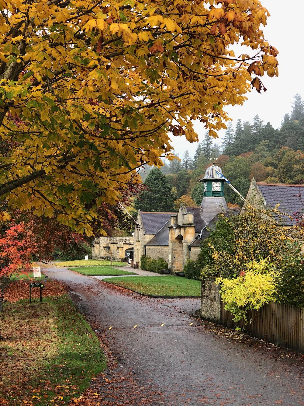 Logie Steading autumn