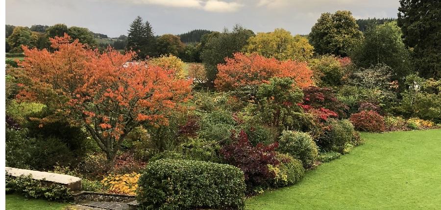 Logie House Garden in Autumn