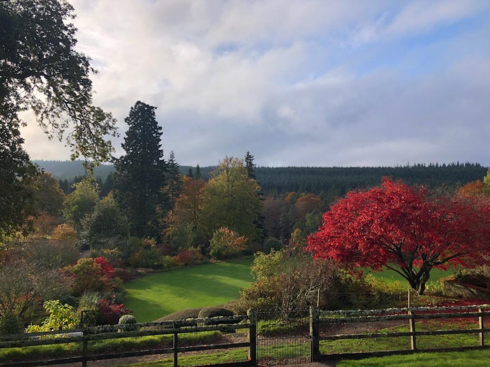 autumn logie house garden